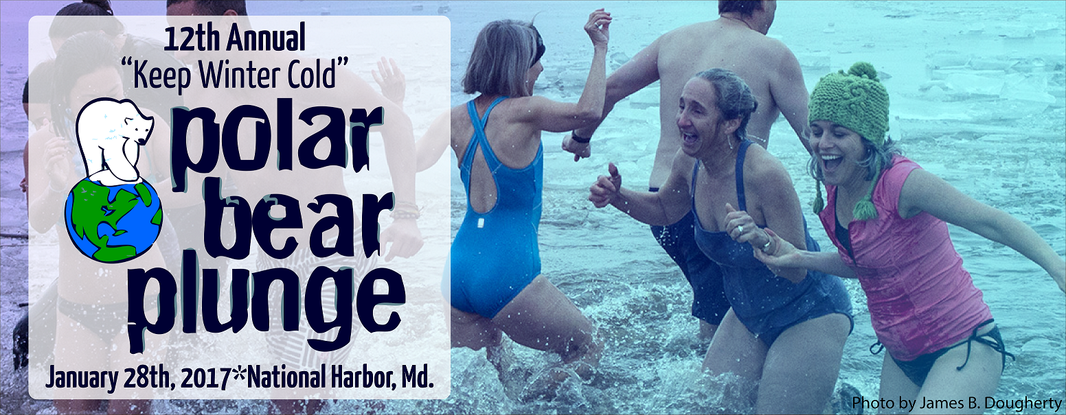 11am-polar-bear-plunge