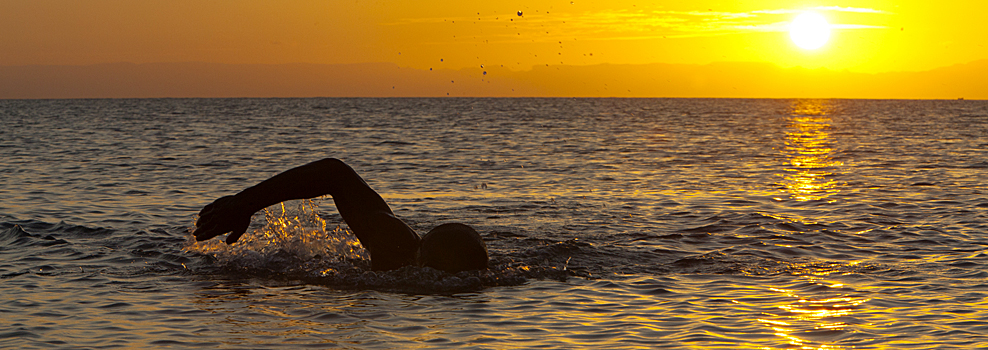Freestyle front crawl open water swimmer at sunset