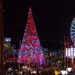 event-space-picture-tree-lighting2
