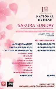 sakura-sunday-wind-master-revised