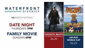 movies2019_motp_template15